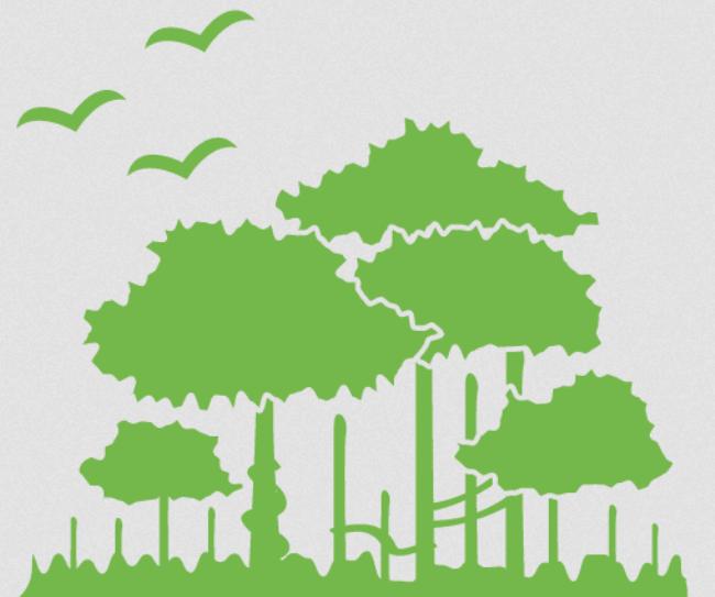 Егаис лес регистрация ип срок действия положения о бухгалтерии